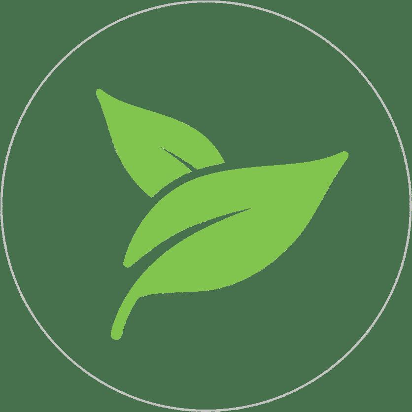 Éco-Habitat & Art de Vivre